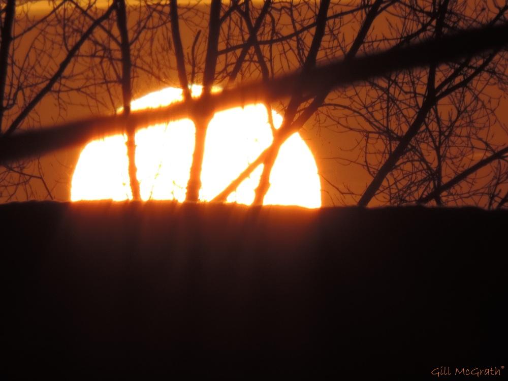 2015 03 04 sun peeking  jpg  sig