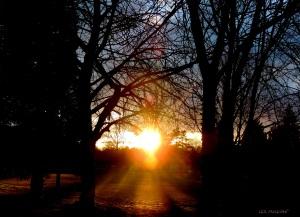 2015 03 07 sun set 5 45  jpg sig