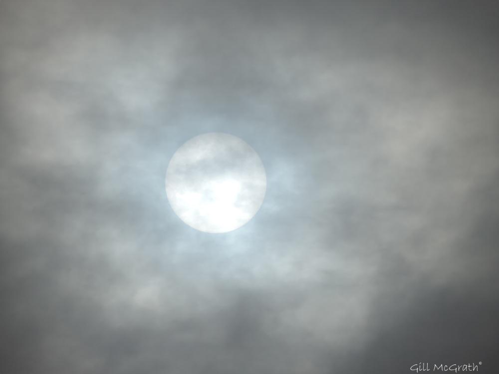 2015 03 20 sun 8 27 DSCN6509 jpg sig