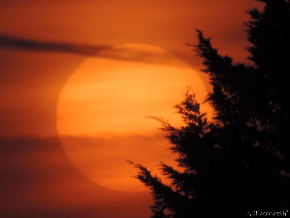 2015 03 20 sunset  5.53 pm jpg sig