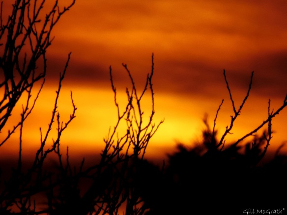 2015 03 22 2 looking for the moon sunset jpg sig
