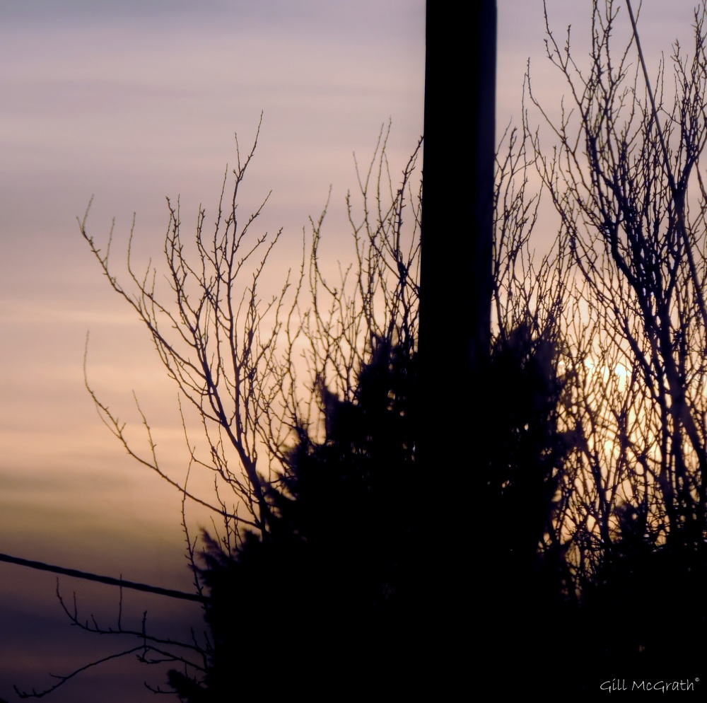 2015 03 23  mists  where they sit jpg sig