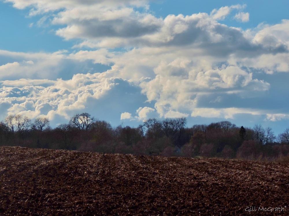 2015 03 24 sky field jpg sig