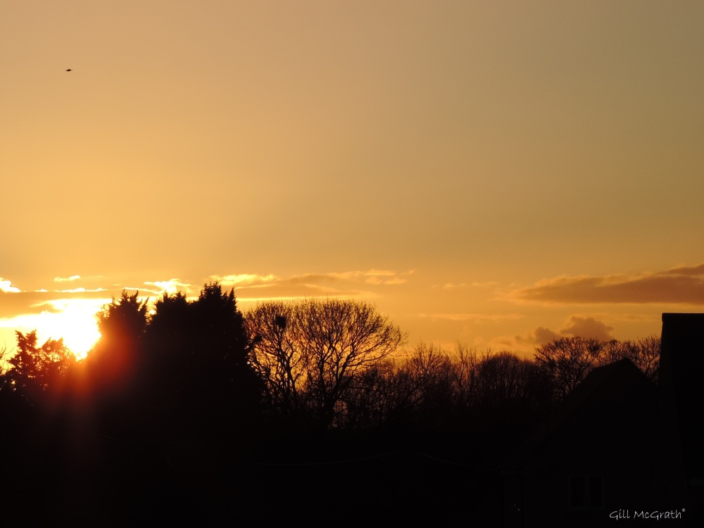 2015 03 26 1817 sunset  jpg sig b