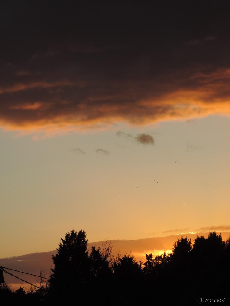2015 03 26 1825 sunset 2 jpg sig