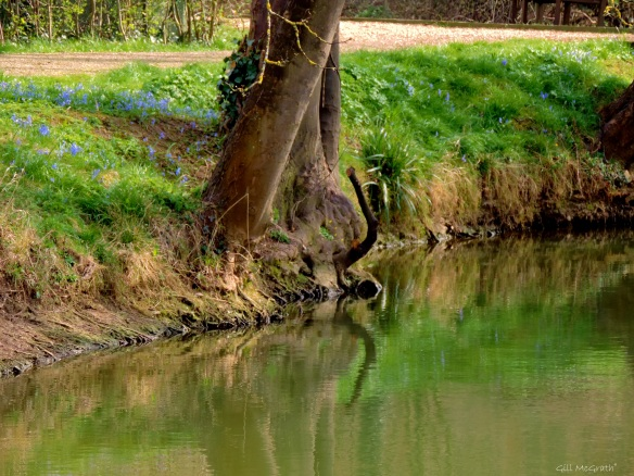 2015 03 26 2 by the water jpg sig