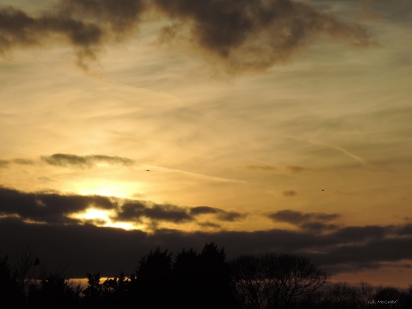 2015 03 27 2 sun 1811 evening 2 jpg sig