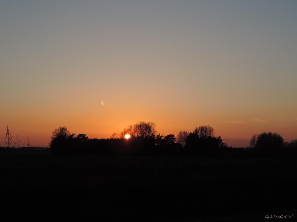 2014 21 04 804 sunset  jpg sig