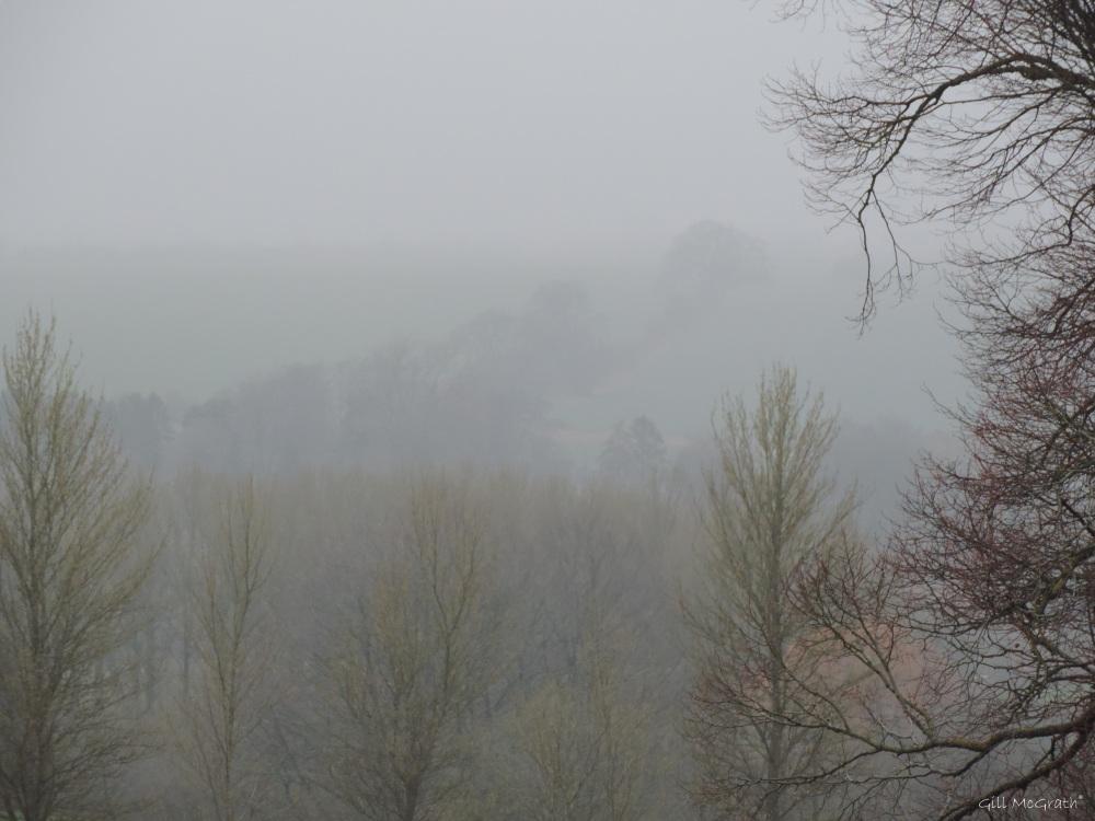 2015 04 03 715 6 mist and rain jpg sig