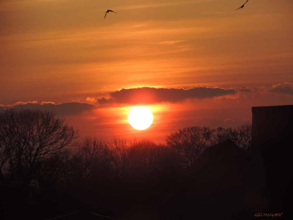 2015 04 06 DSCN8617 733 sun set jpg sig
