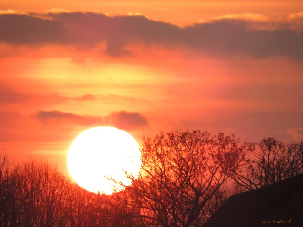 2015 04 06 DSCN8627 736 sun set 2 jpg sig