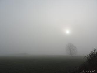 2015 04 07  720  mist DSCN8759 jpg sig