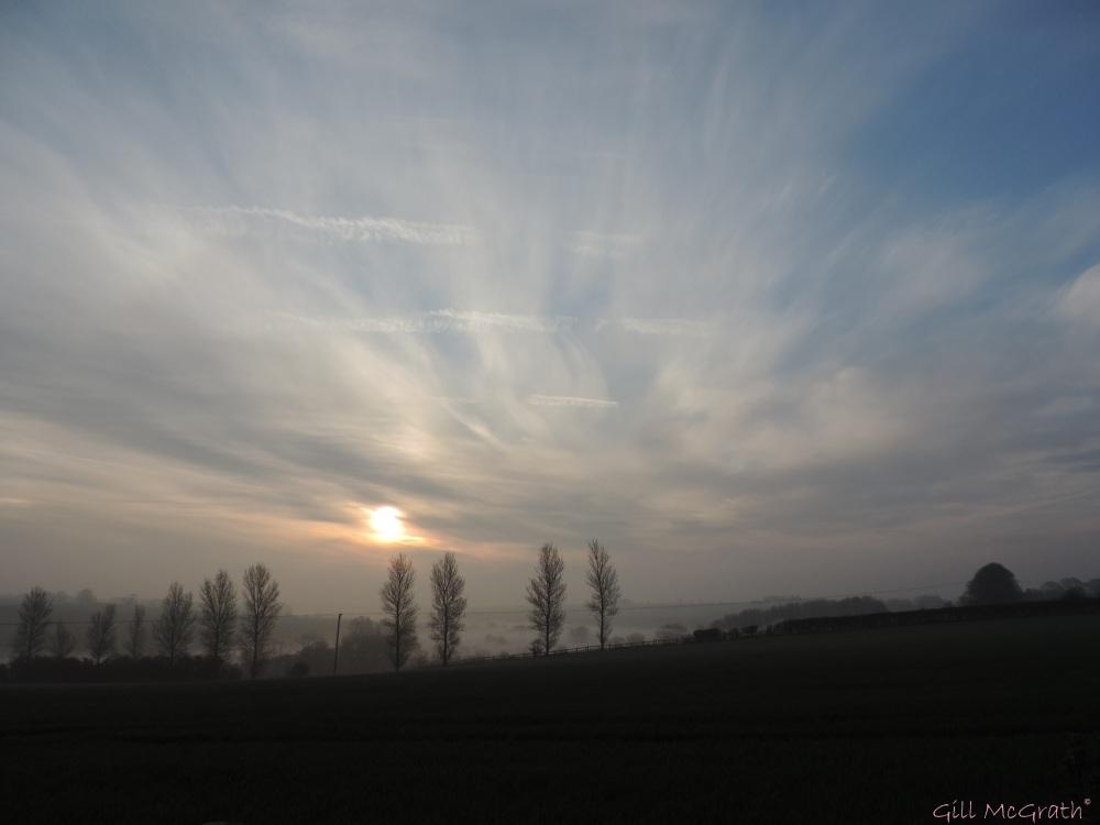 2015 04 10  711  field  mist sun jpg sig