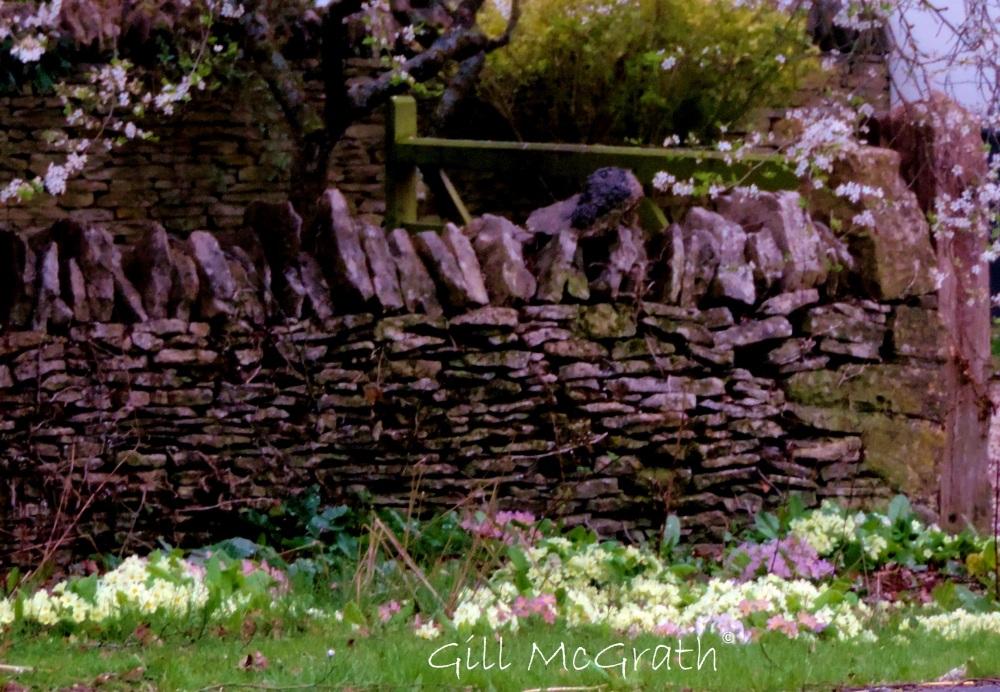 2015 04 11  garden wall jpg sig