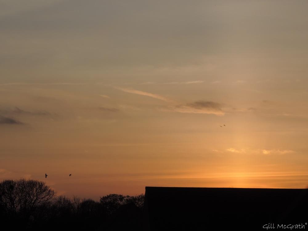 2015 04 13   sunset jpg sig