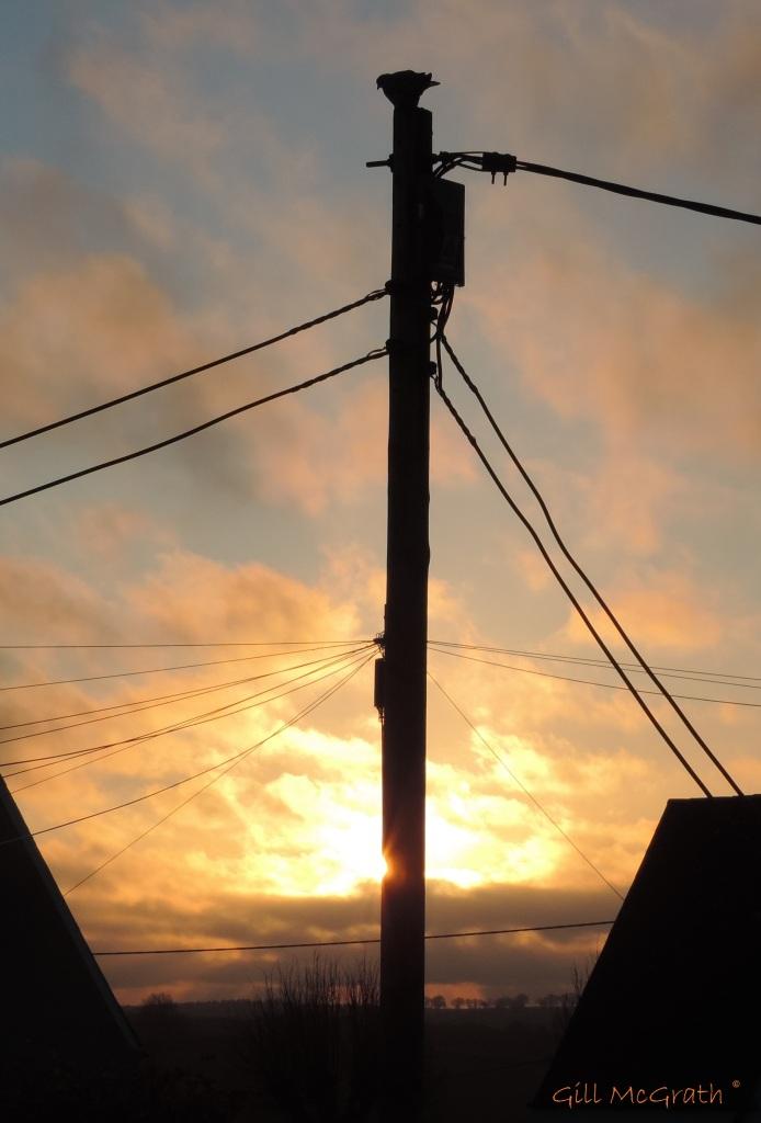2015 04 18 630 pole dance sunrise  jpg sig