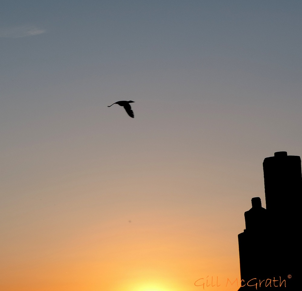 2015 04 19 last nights sunset 1 jpg sig