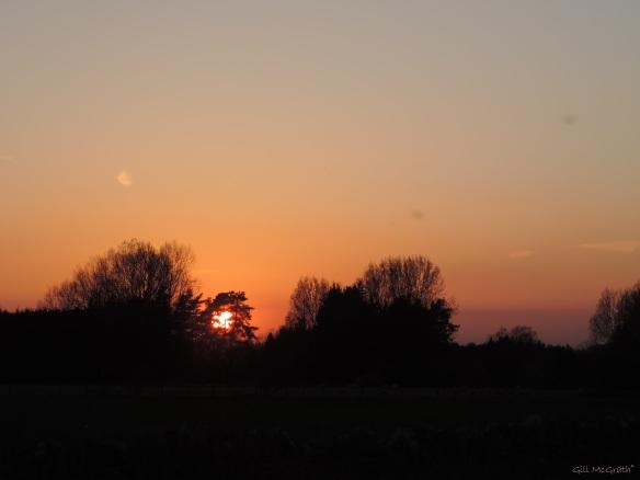 2015 04 21 806 sunset 2 jpg sig