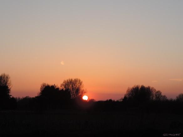 2015 04 21 808 sunset 4 jpg sig
