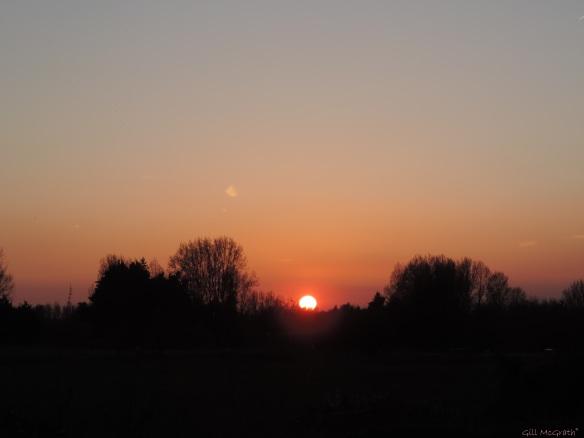 2015 04 21 808 sunset 5 jpg sig