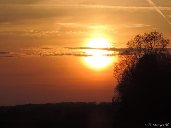 2015 04 23 sunset detail DSCN1762jpg sig