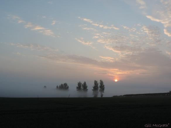 2015 04 24  610 sunrise DSCN1829 jpg sig