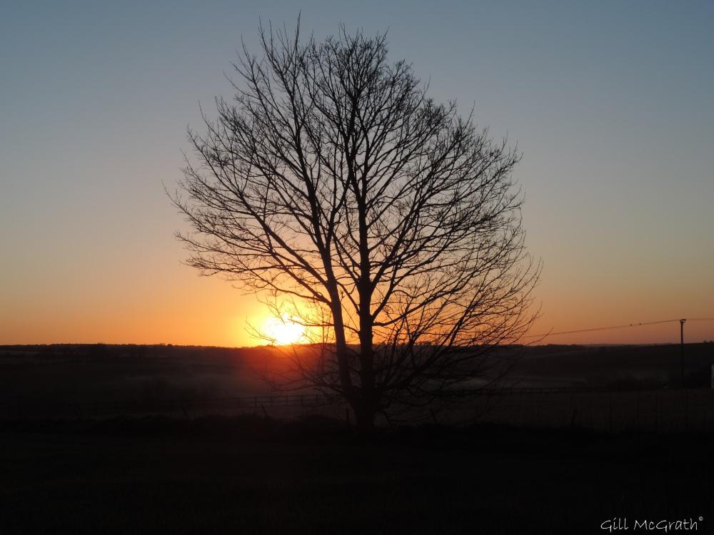 2015 04 28 5 558 sunrise behind DSCN2725 jpg sig