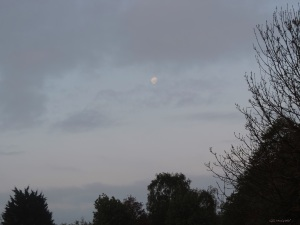 2015 05 07 sunrise moon DSCN3707 jpg sig