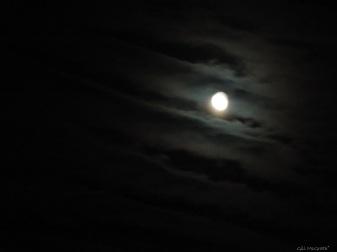 2015 05 08  419 moon cam 419 DSCN3858 jpg sig