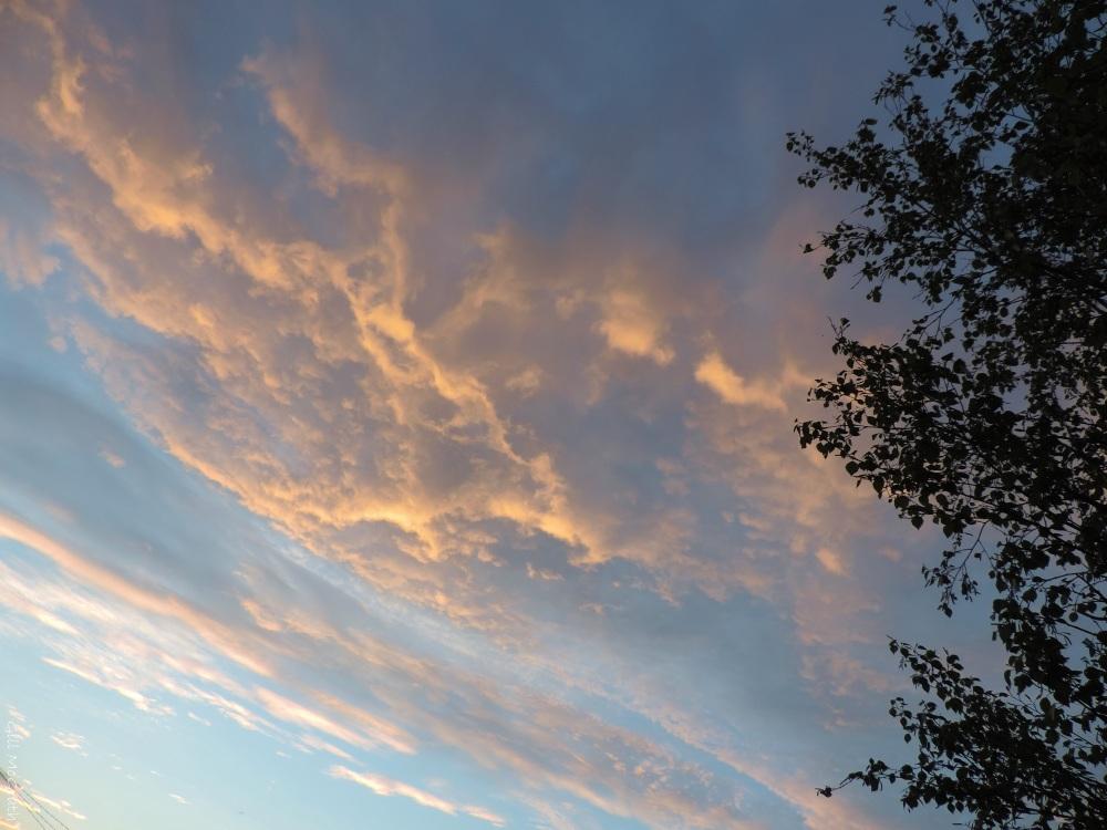 2015 05 11 sky DSCN4356 jpg sig