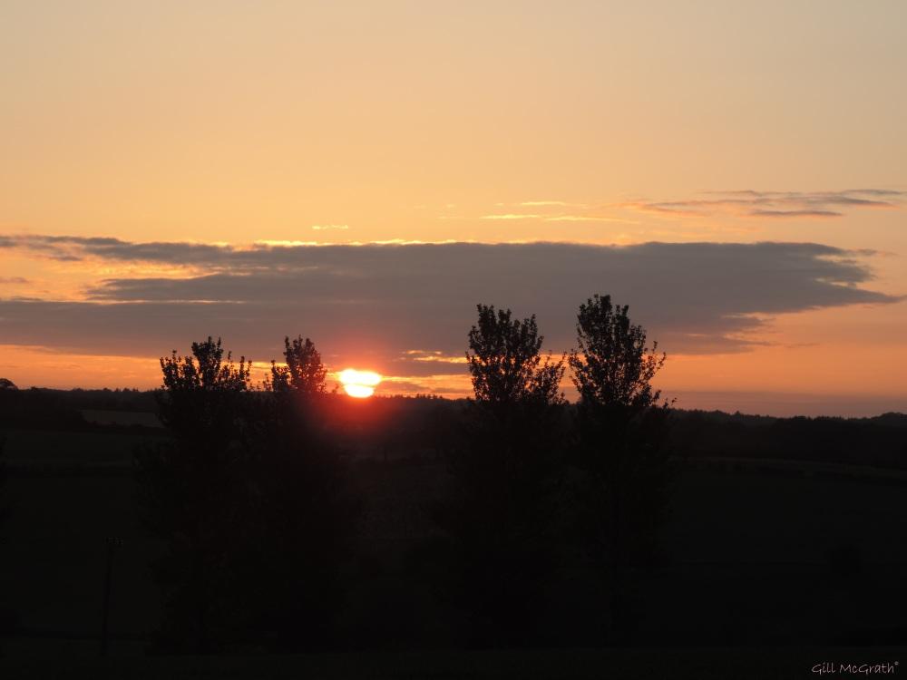 2015 05 15 527  sunrise  DSCN4909 jpg sig