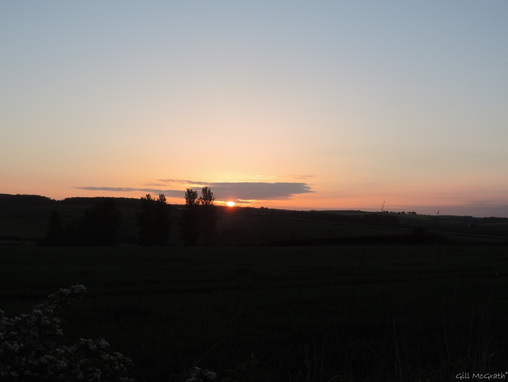 2015 05 15 528  sunrise DSCN4911 jpg sig