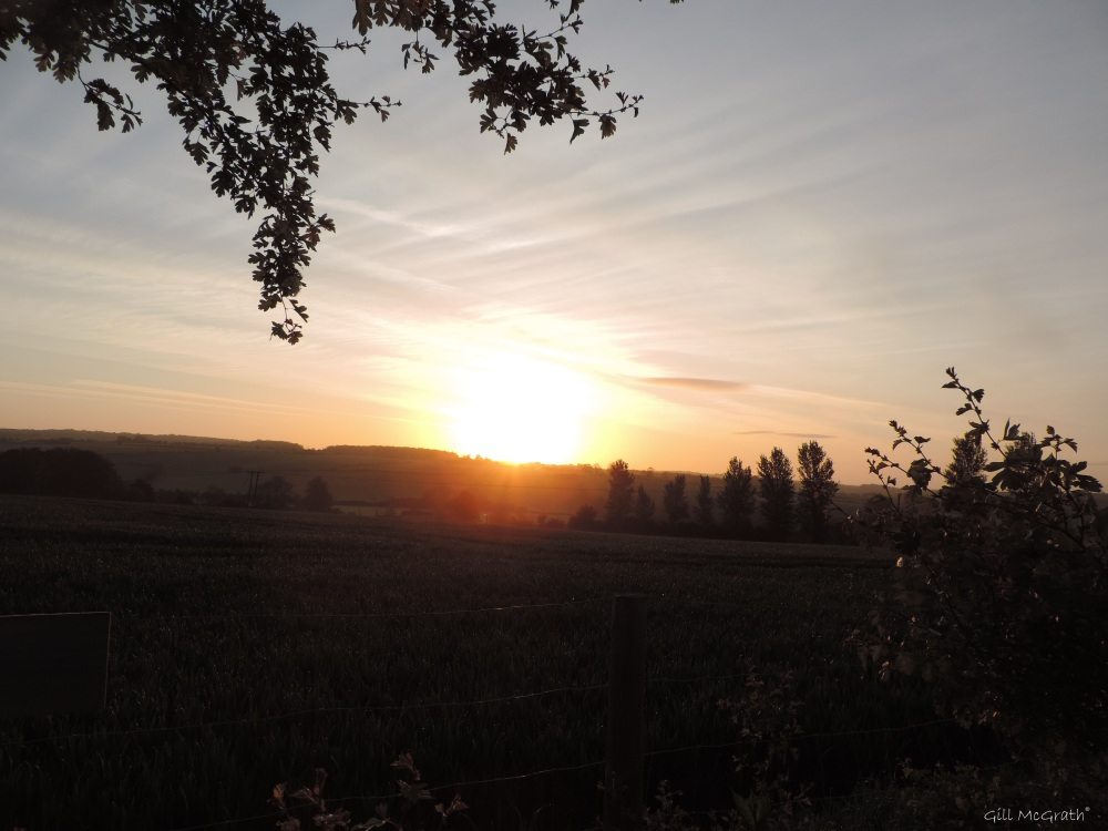 2015 05 17  2 sunrise 534 DSCN5241 jpg sig