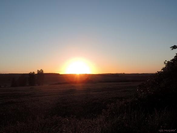 2015 05 20  between 6 and 13 sunrise DSCN5533 jpg sig