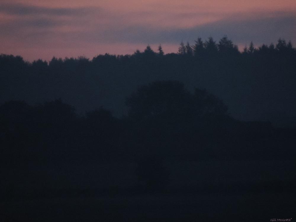 2015 05 23 DSCN5916 426 2015 05 23 sunrise jpg sig