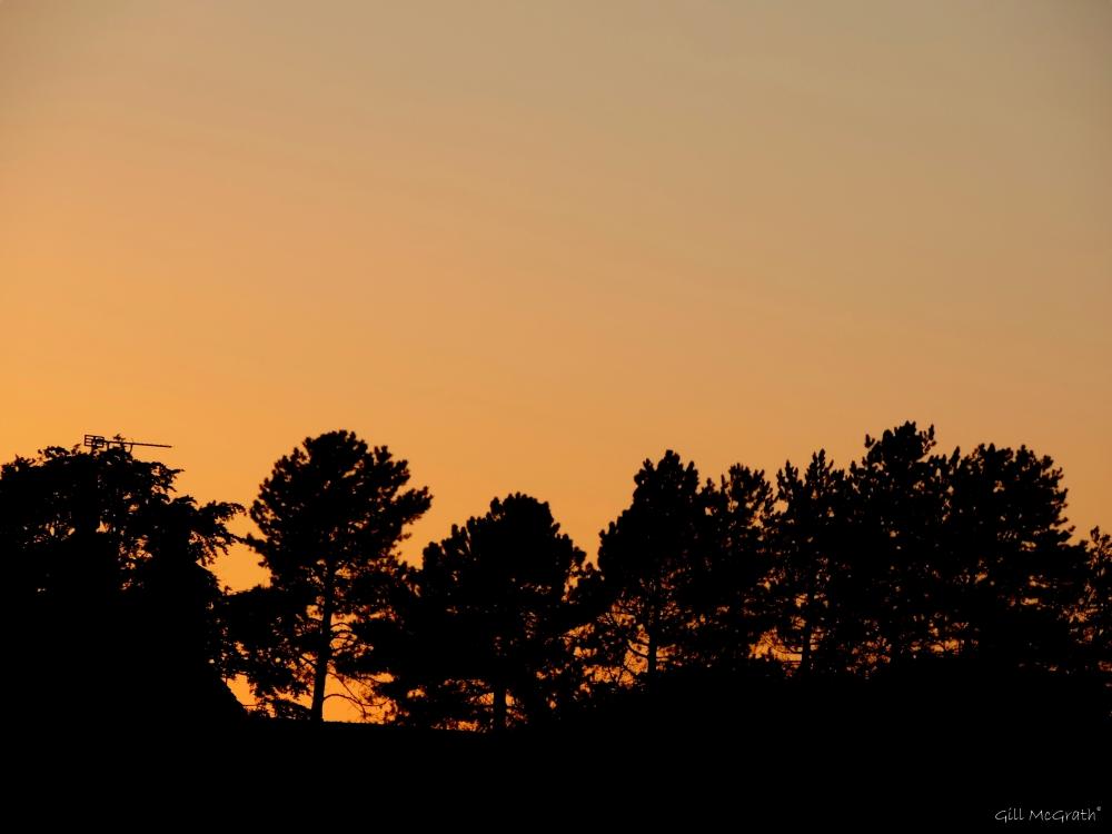2015 05 29 906 sun set DSCN7043 jpg sig