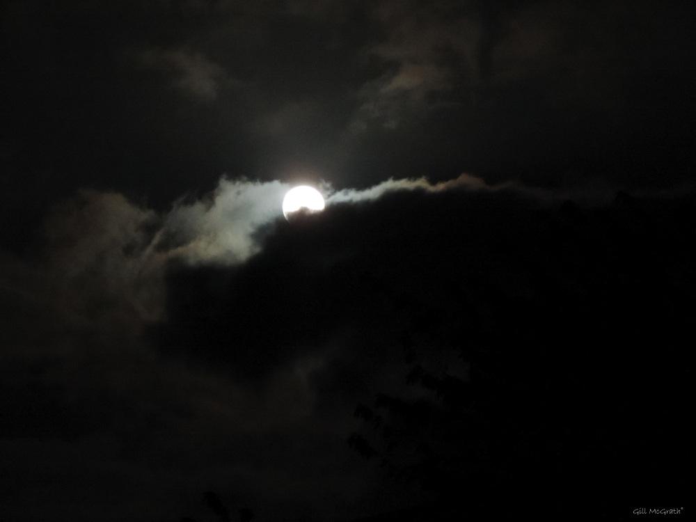 2015 06 03 2 moon 1117 DSCN7752 jpg sig