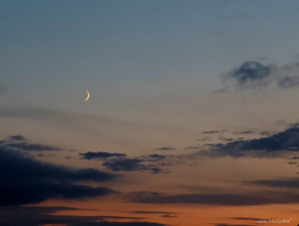 2015 06 19  moon DSCN2181 jpg sig
