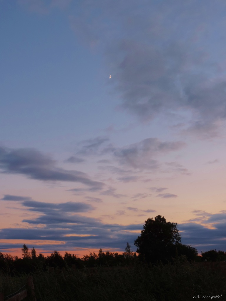 2015 06 22  moon sunset DSCN2690 jpg sig