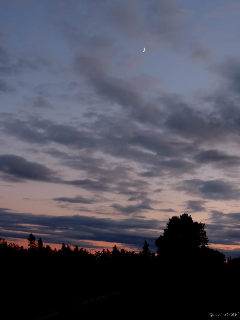 2015 06 22 moonsunset DSCN2707 jpg sig