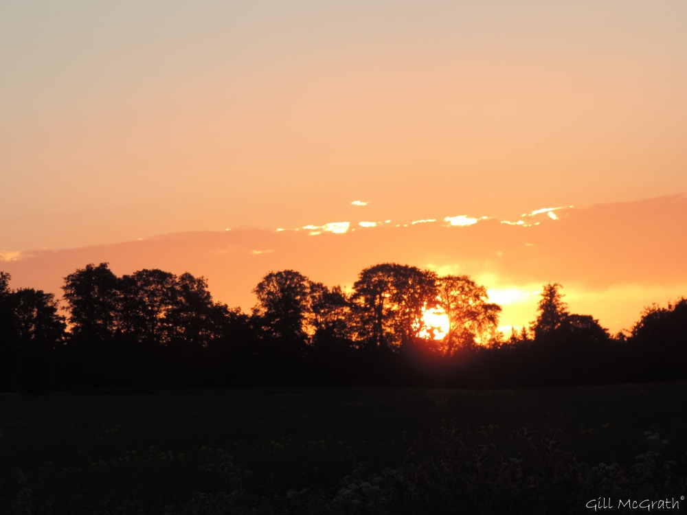 4 2015 06 04 913 sunset  DSCN8294 jpg sig