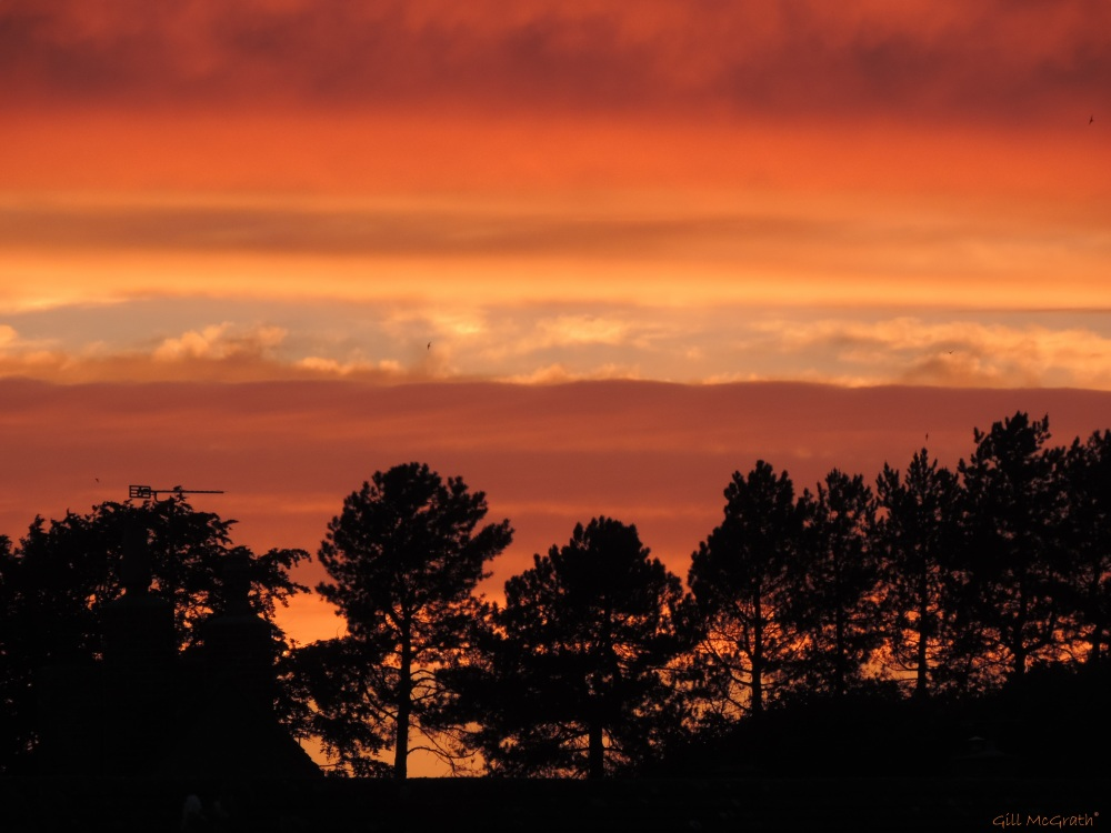 4 2015 06 05 926  sunset DSCN8559 jpg sig