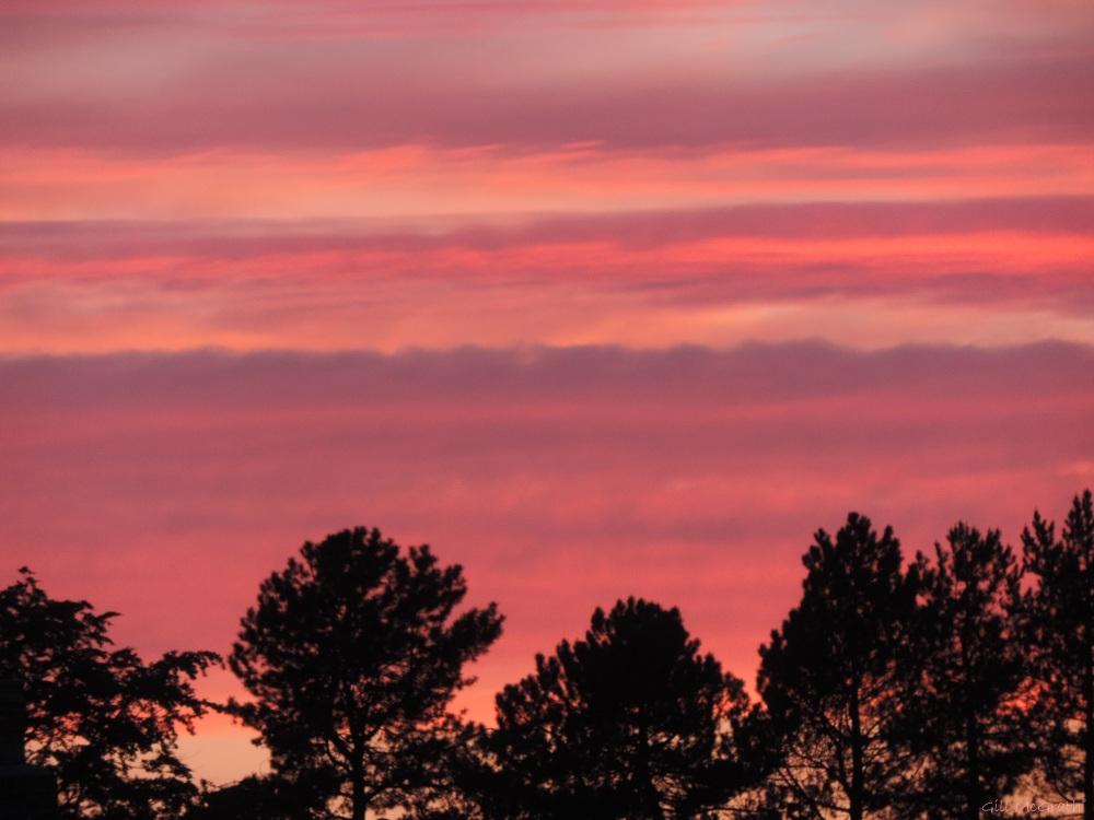 8 2015 06 05 937 sunset DSCN8600 jpg sig