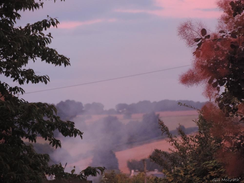 2015 08 15 mist morning DSCN8620.jpg sig