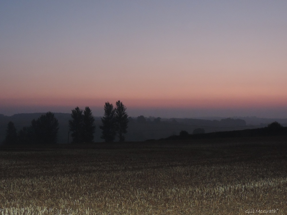 2015 09 11 September is a new cut field DSCN2642.jpg jpg sig