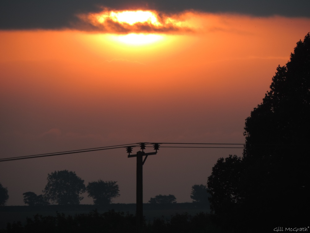 2015 10 13 sun DSCN7376.jpg sig
