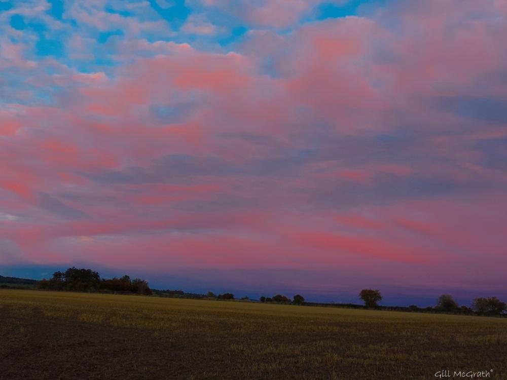 2015 10 24 sunset field DSCN8324.jpg sig
