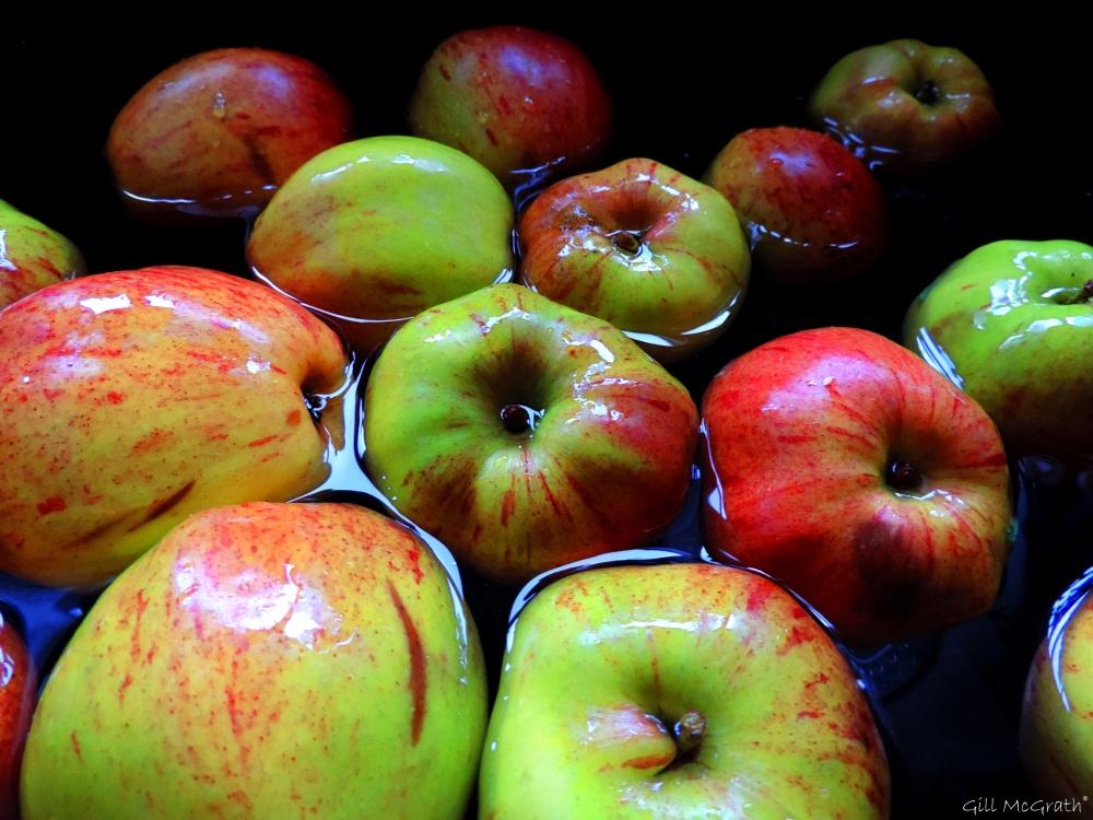 2015 10 30 apple bobbing DSCN9087.jpg sig