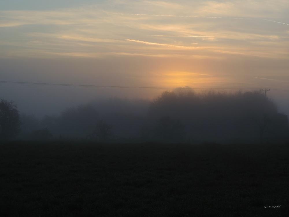 4 2015 11 12  sun rise DSCN9816.jpg sig