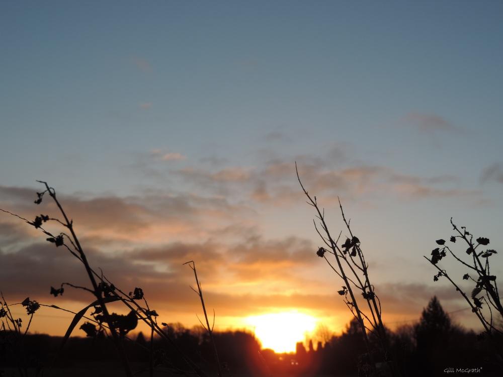 2015 12 04 815 sunrise DSCN1657.jpg sig